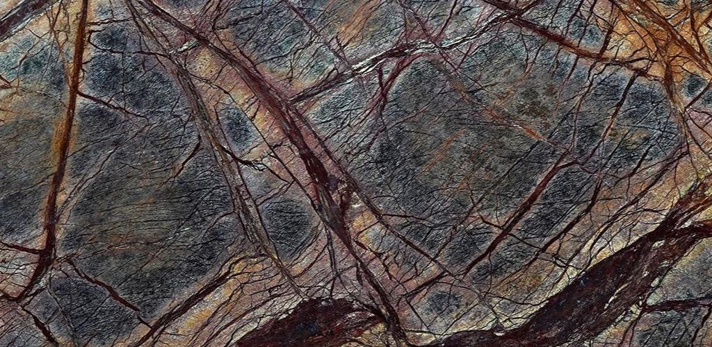 Rain-Forest-Brown