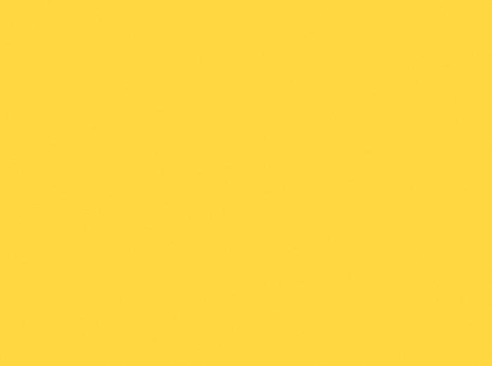 Sunflower(N)-SS042